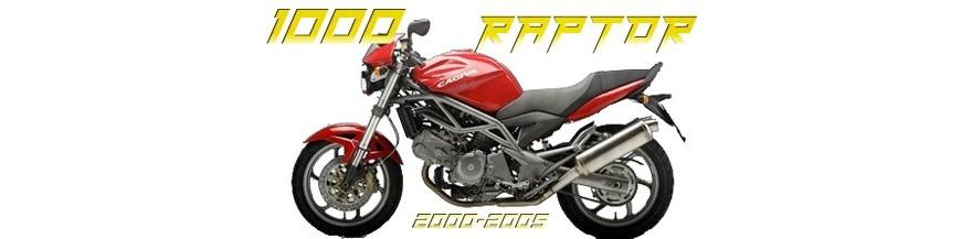 1000 RAPTOR 2000/2005